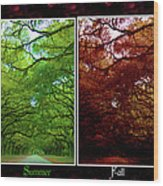The Four Seasons- Featured In Comfortable Art And Newbies Groups Wood Print