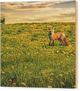 The Fox And The Cow Wood Print