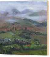 The French Pyrenees Wood Print