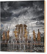 The Friendship Fountain Moscow Wood Print