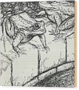 The Frogs And The Well Wood Print