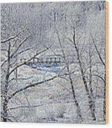 The Frozen Bridge Wood Print by Maria Angelica Maira