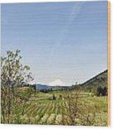 The Fruits Of  Mount Hood Wood Print