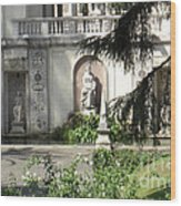 The Garden At The Pope's Private Residence Wood Print