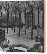 The Garden Of A Home In Meridian Hill Wood Print