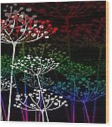 The Garden Of Your Mind Rainbow 3 Wood Print