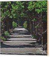 The Garden Pathway 2 Wood Print