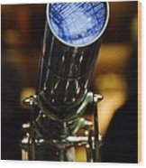 The Garden Telescope Wood Print