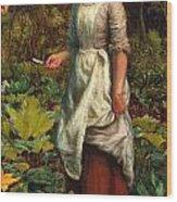 The Gardeners Daughter Wood Print