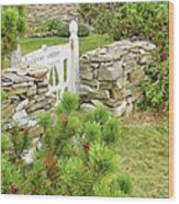 The Gate By The Sea Wood Print