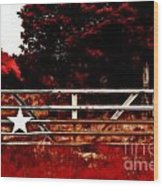 The Gate To Texas  Wood Print