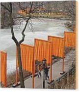 The Gates In Central Park Wood Print