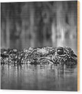 The Gator Wood Print
