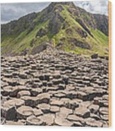 The Giant's Causeway In Northern Ireland Wood Print