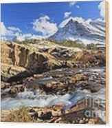 The Glacier Rush Wood Print