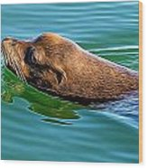 The Glide Wood Print by Denise Darby
