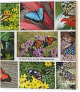 The Glory Of Butterflies 3 Wood Print