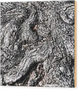 The Gnarled Old Tree Wood Print