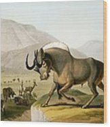 The Gnoo, 1804 Wood Print