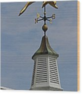 The Golden Dolphin Weathervane Wood Print by Juergen Roth