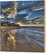 the golden hour during sunset at Israel Wood Print by Ronsho