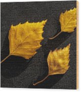 The Golden Leaves Wood Print