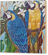 The Golden Macaw Wood Print