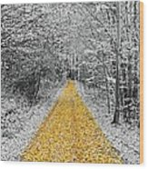 The Golden Path  Wood Print