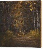 The Golden Road Wood Print by Stuart Deacon
