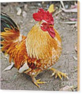 The Golden Rooster Wood Print