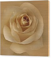 The Golden Rose Flower Wood Print