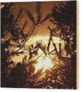 The Golden Sunset Wood Print