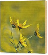 The Golden Wildflowers Wood Print