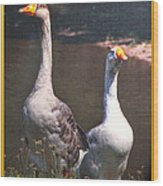 The Goose And The Gander Wood Print