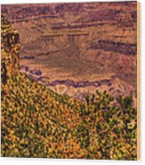 The Grand Canyon II Wood Print