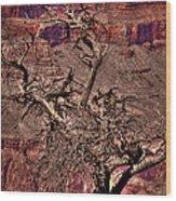 The Grand Canyon Viii Wood Print