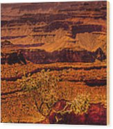 The Grand Canyon X Wood Print