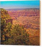 The Grand Canyon Xi Wood Print