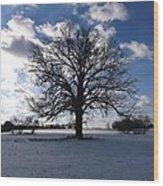 The Grand Tree Season Winter Wood Print