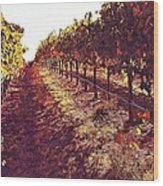The Grapes Of The Wine Country Wood Print