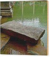 The Great Bath At Bath Wood Print