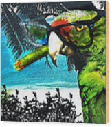 The Great Bird Of Casablanca Wood Print