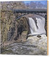 The Great Falls Wood Print