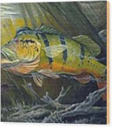 The Great Peacock Bass Wood Print by Terry  Fox