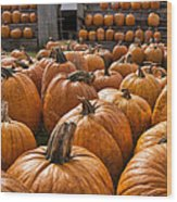 The Great Pumpkin Farm Wood Print by Peter Chilelli