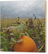 The Great Pumpkin Wood Print