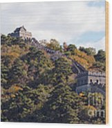 The Great Wall 632c Wood Print