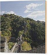 The Great Wall 649 Wood Print