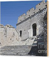 The Great Wall 724 Wood Print