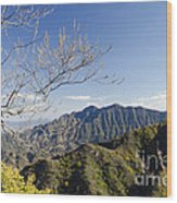 The Great Wall 834 Wood Print